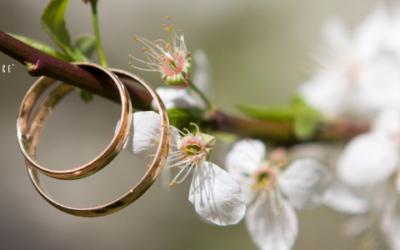 Premarital Agreements in North Carolina